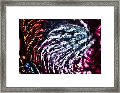 Hear Me Now Framed Print by Omaste Witkowski