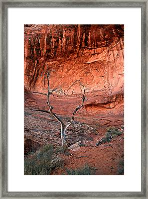 Heart And Stone Framed Print