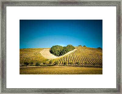 Heart Hill 2 Framed Print by Connie Cooper-Edwards