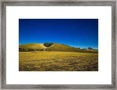 Heart Hill 3 Framed Print by Connie Cooper-Edwards