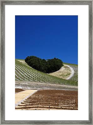 Heart Hill Framed Print by Jason O Watson