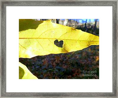 Heart Leaf Framed Print