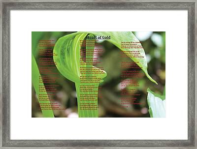 Heart Of Gold Framed Print