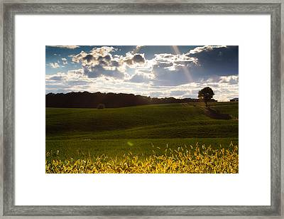 Heart Of Nature Framed Print by Everett Houser