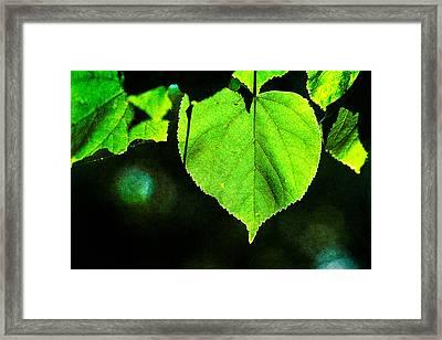 Heart Of The Forest - Green Framed Print by Alexander Senin