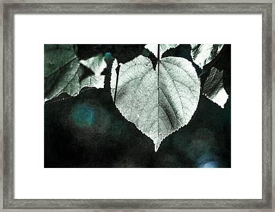 Heart Of The Forest - Silver Framed Print by Alexander Senin
