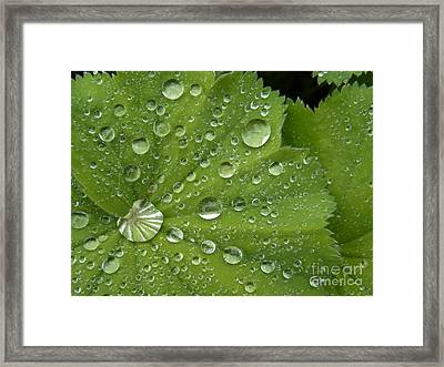 Heart Overflowing Framed Print