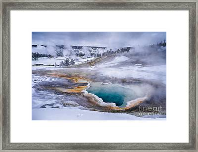 Heart Spring Framed Print by Priscilla Burgers