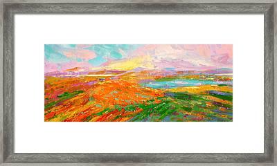 Heartland Series/ Vineyards Framed Print by Marilyn Hurst