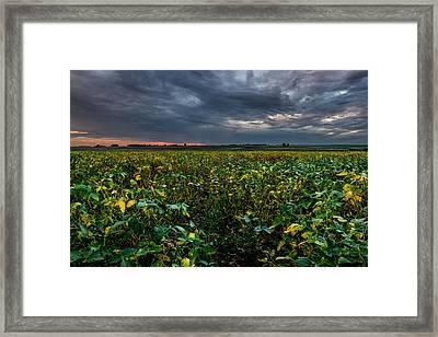 Heartland Sunset Framed Print by Aaron J Groen