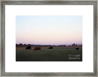 Framed Print featuring the photograph The Kittitas Valley I by Susan Parish