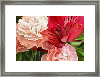 Heart's A Flutter Framed Print by Julie Andel