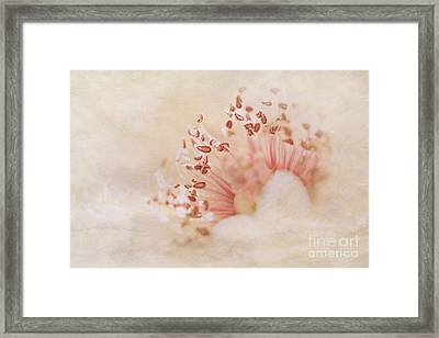 Hearts And Flowers Framed Print by A New Focus Photography