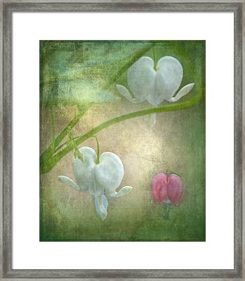 Hearts Framed Print by Angie Vogel