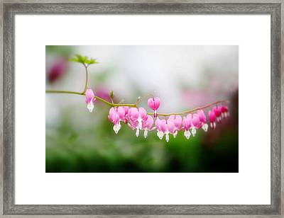 Hearts On A Line Framed Print by Rebecca Cozart