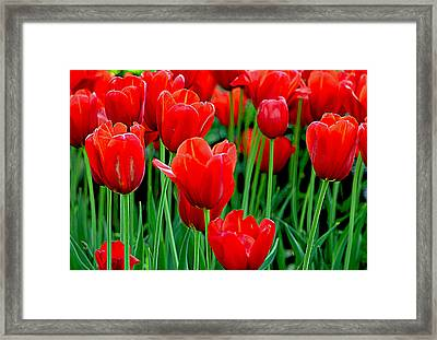 Hearts On Fire........ Framed Print