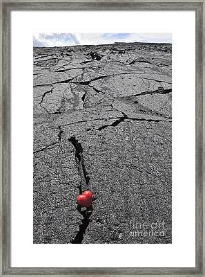 Heartshape In Crack Of Cooled Pahoehoe Lava Framed Print by Sami Sarkis