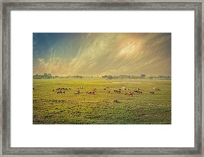 Heat N Dust - Indian Countryside Framed Print