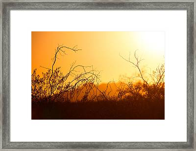 Framed Print featuring the photograph Heat Of The Day by Brad Brizek