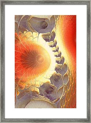 Heat Shield Framed Print by Anastasiya Malakhova