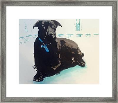 Heathers Dog Framed Print
