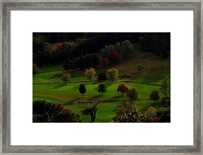 Heaven Below Tiny Trees Framed Print by Stephen Melcher