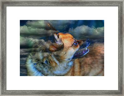 Heaven Bound Framed Print by Larry Trupp