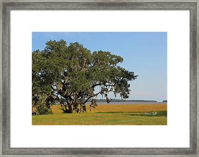 Heaven Is A Beautiful Place Framed Print