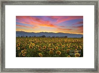 Heaven Framed Print by Rima Biswas