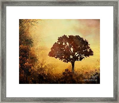 Heavenly Dawn Framed Print by Peter Awax