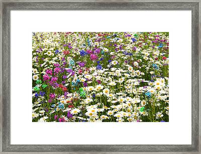 Framed Print featuring the photograph Heavenly Flower Bed by Larry Landolfi