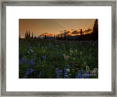 Heavenly Garden Framed Print