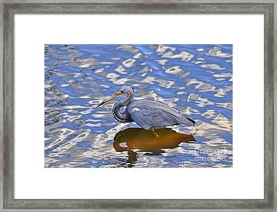 Heavenly Heron Framed Print