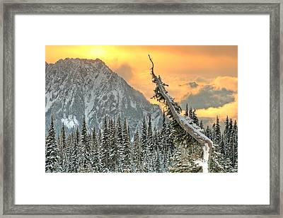 Heavenly Framed Print by Jeff Cook