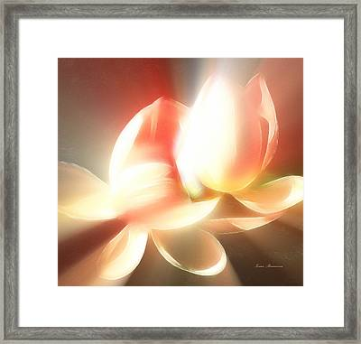 Heavenly Lilies Framed Print