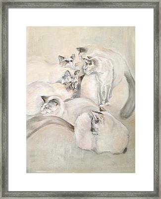 Heavenly Puffs Framed Print by Janet Felts