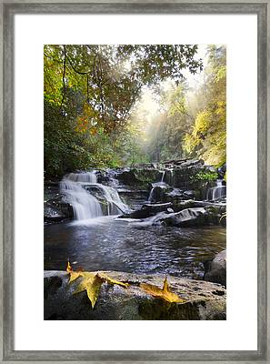 Heaven's Light Framed Print by Debra and Dave Vanderlaan