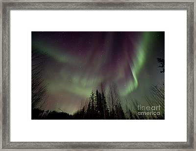 Heavens Lights Framed Print by Priska Wettstein