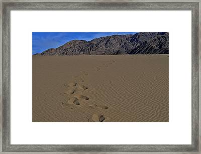 Heavy Feet Framed Print by See My  Photos