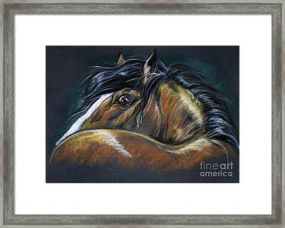Heavy Horse Drawing Framed Print