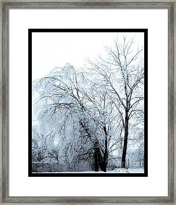 Heavy Ice Tree Redo Framed Print by Marsha Heiken
