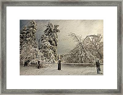 Heavy Laden Blizzard Framed Print by Lois Bryan