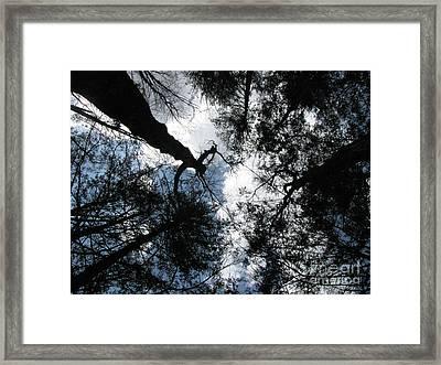 Hecate 3 Framed Print by Melissa Stoudt