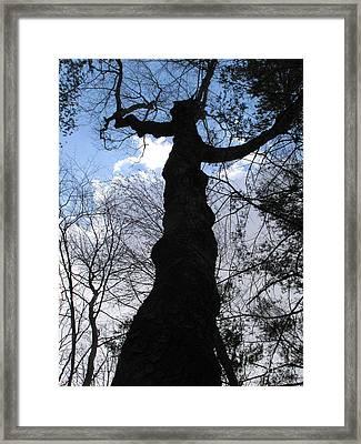 Hecate Framed Print by Melissa Stoudt