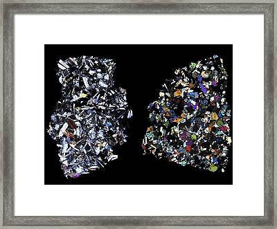 Hed Meteorites, Light Micrograph Framed Print by Science Photo Library