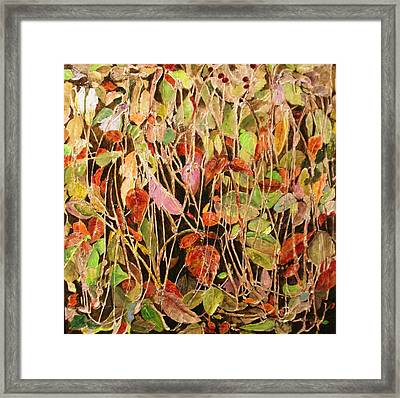 Hedge Brake Framed Print