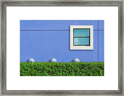 Framed Print featuring the photograph Hedge Fund by Paul Wear