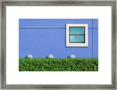 Hedge Fund Framed Print by Paul Wear