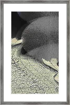 Hedgehog Framed Print by Steve Godleski