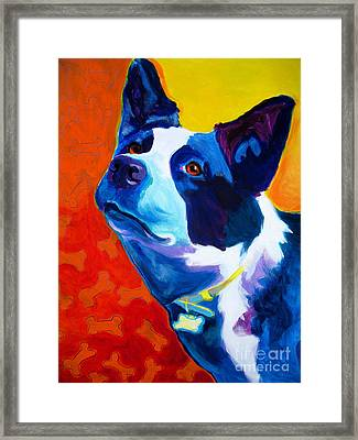 Heeler - Piper Framed Print by Alicia VanNoy Call